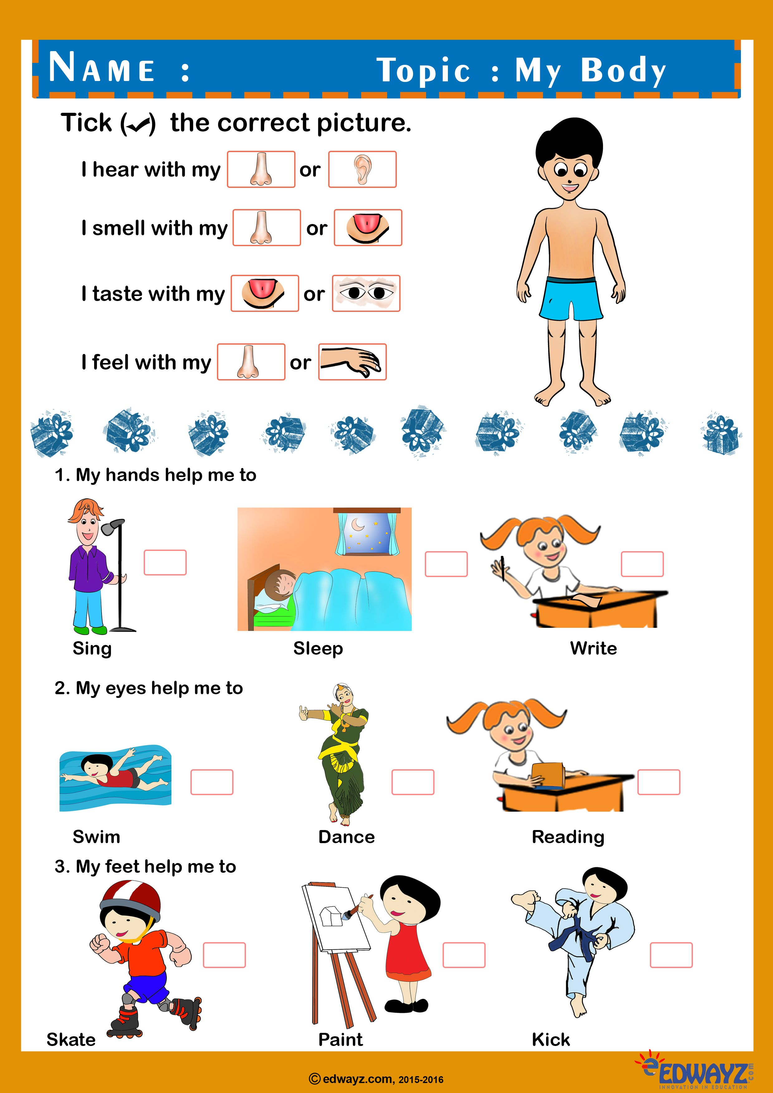 Free Printable Worksheets for Class 1 to identify the pictures and tick thr  right option. Fr…   Worksheets for class 1 [ 3508 x 2480 Pixel ]