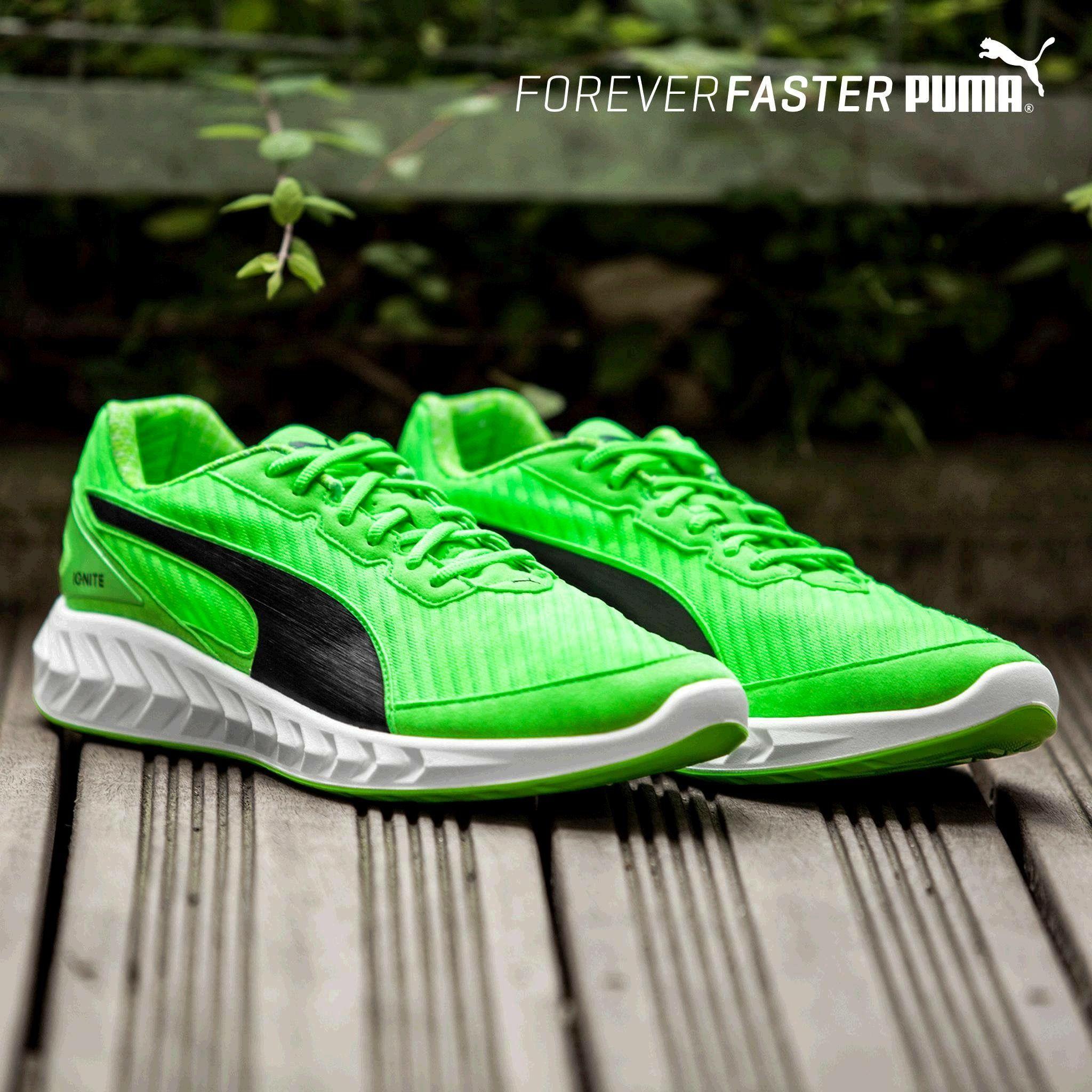 nike the run puma coaching shoes