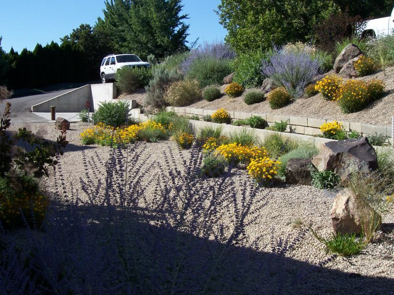 Landscaping Ideas Garden Design Pictures Xeriscapes