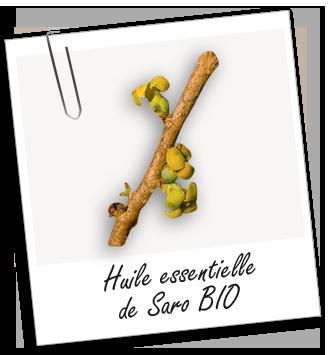 Huile essentielle de saro huiles essentielles hom opathie pinterest natural health - Homeopathie coup de froid ...