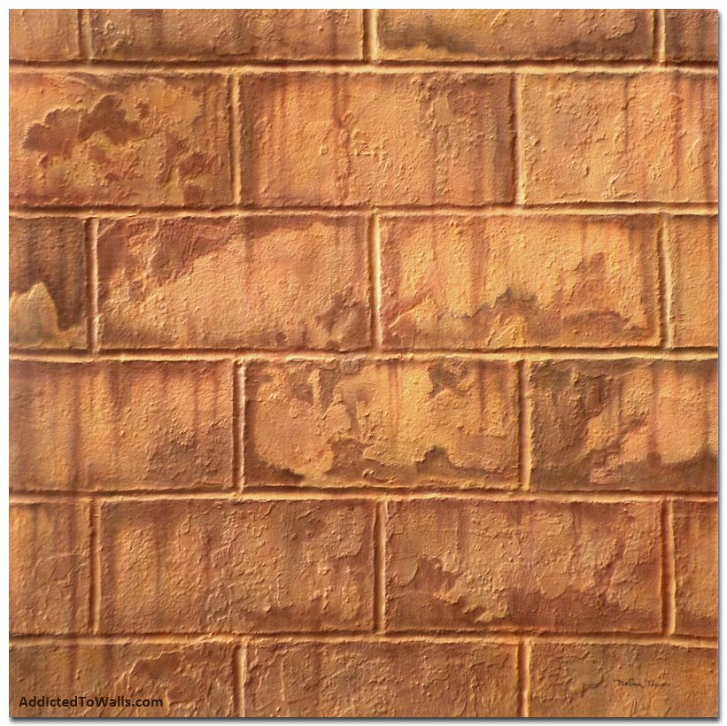 Cinder block basement walls deep burnt orange rust for Block basement walls