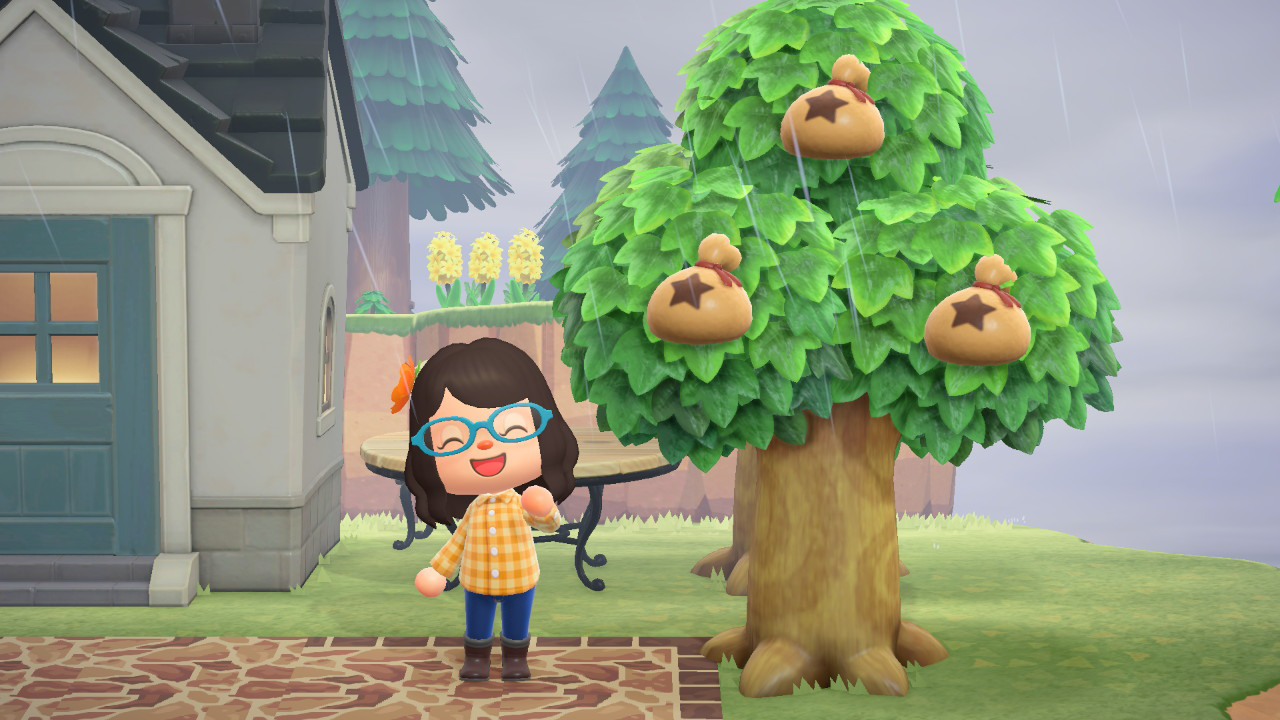 Animal Crossing New Horizons How To Grow A Money Tree Animal Crossing Money Trees Trees To Plant