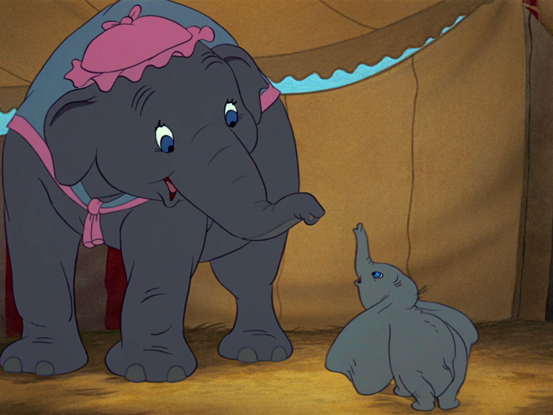 MRS. JUMBO & DUMBO ~ Dumbo (1941) | Disney dumbo art, Disney dumbo ...