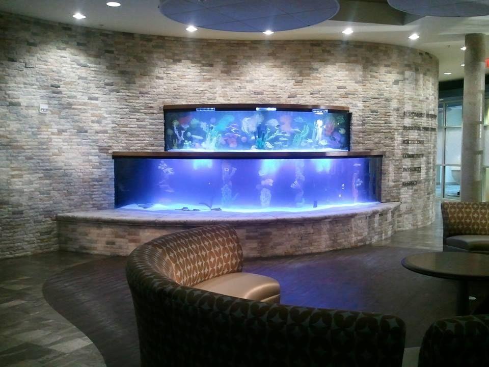aquarium office. #aquarium #office #home #commercial #owner #interior #decor #chair Aquarium Office