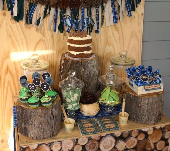 Boy's Lumberjack Camp 2nd Birthday Party Theme