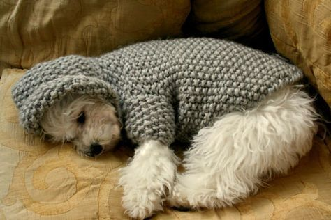 READY TO SHIP Dog Hoodie Sweater Grey Pet Clothing Hand Knit Dog ...