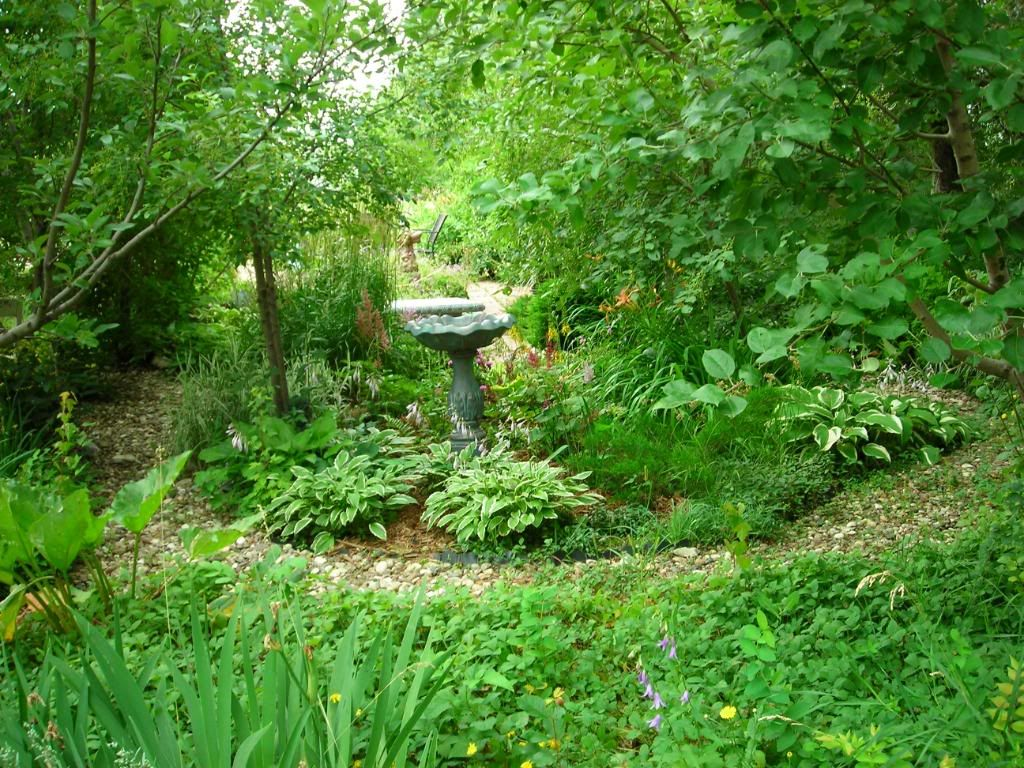 astounding woodland garden ideas