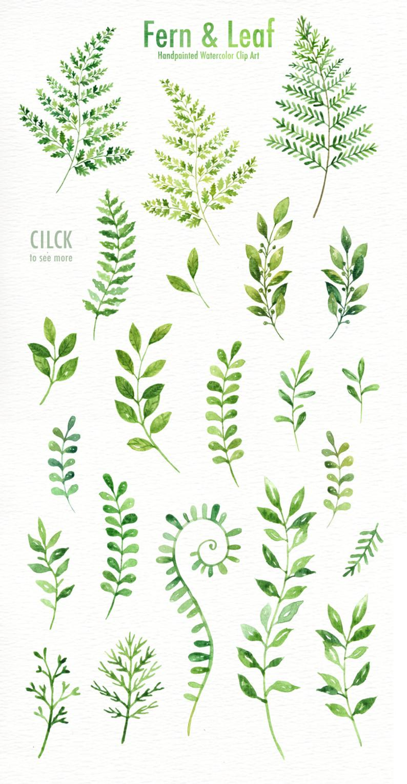Fern & Leaf Watercolor clipart,  Forest Leaves Cli