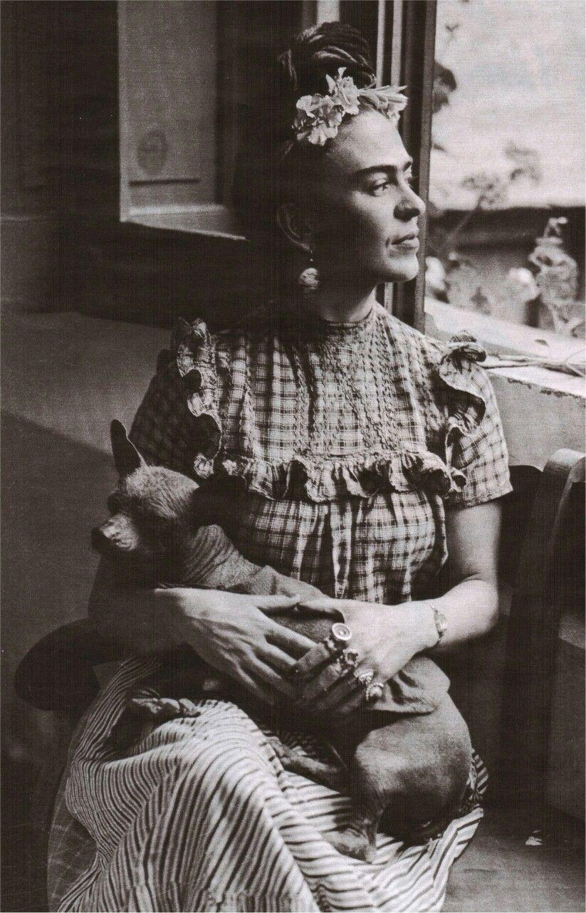 Friday Kahlo and her Dog Zolo | Frida and diego, Portrait, Frida kahlo