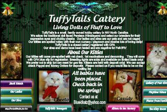 TuffyTails Cattery features Doll Faced HImalayans raised as members of the family. Available teenagers