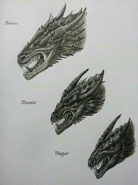 head studies dragon steeds from the war of conquest by