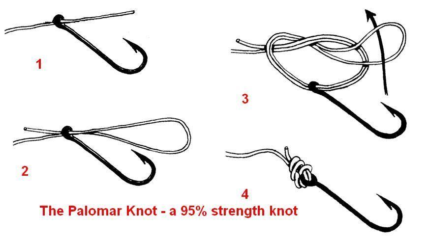 palomar knot - step by step