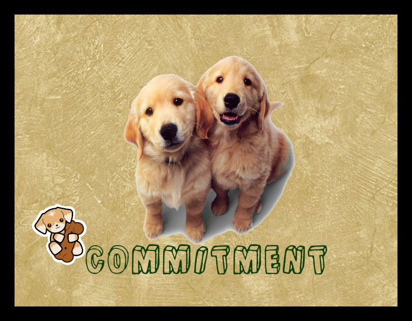 commitment puppy dog ) Home Decor Rustic Primitive Sign Plaque wall ...