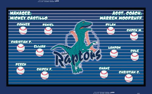 Raptors Digitally Printed Vinyl Baseball Minor League Sports Team Banner Made In The Usa And Shipped Fast By Sports Team Banners Digital Banners Art Template
