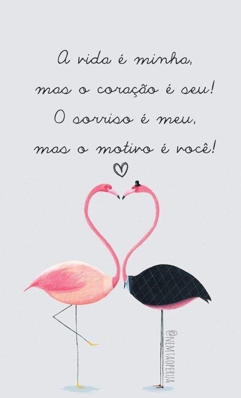 Papel De Parede Para Celular Flamingo Blog Nem Tao Perua 10