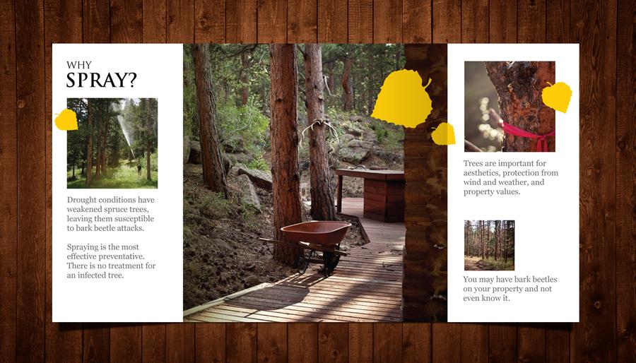 freelance Create the next brochure design for TigerTree Land Management by tündérke