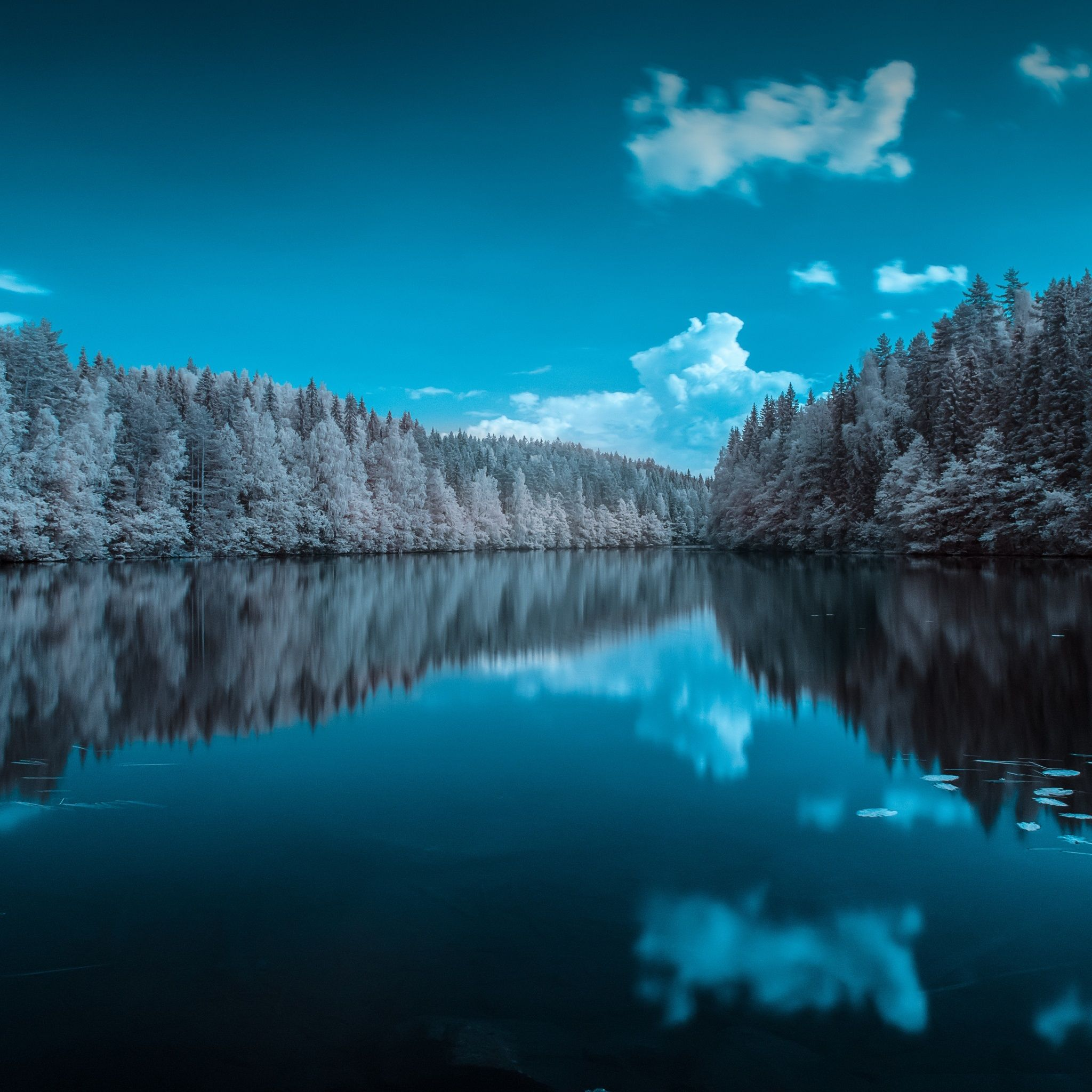 Finland Forest Lake Tap To See More Ombre Styled Peaceful Lake Wallpapers Mobile9 Forest Lake Ipad Wallpaper Ipad Air Wallpaper