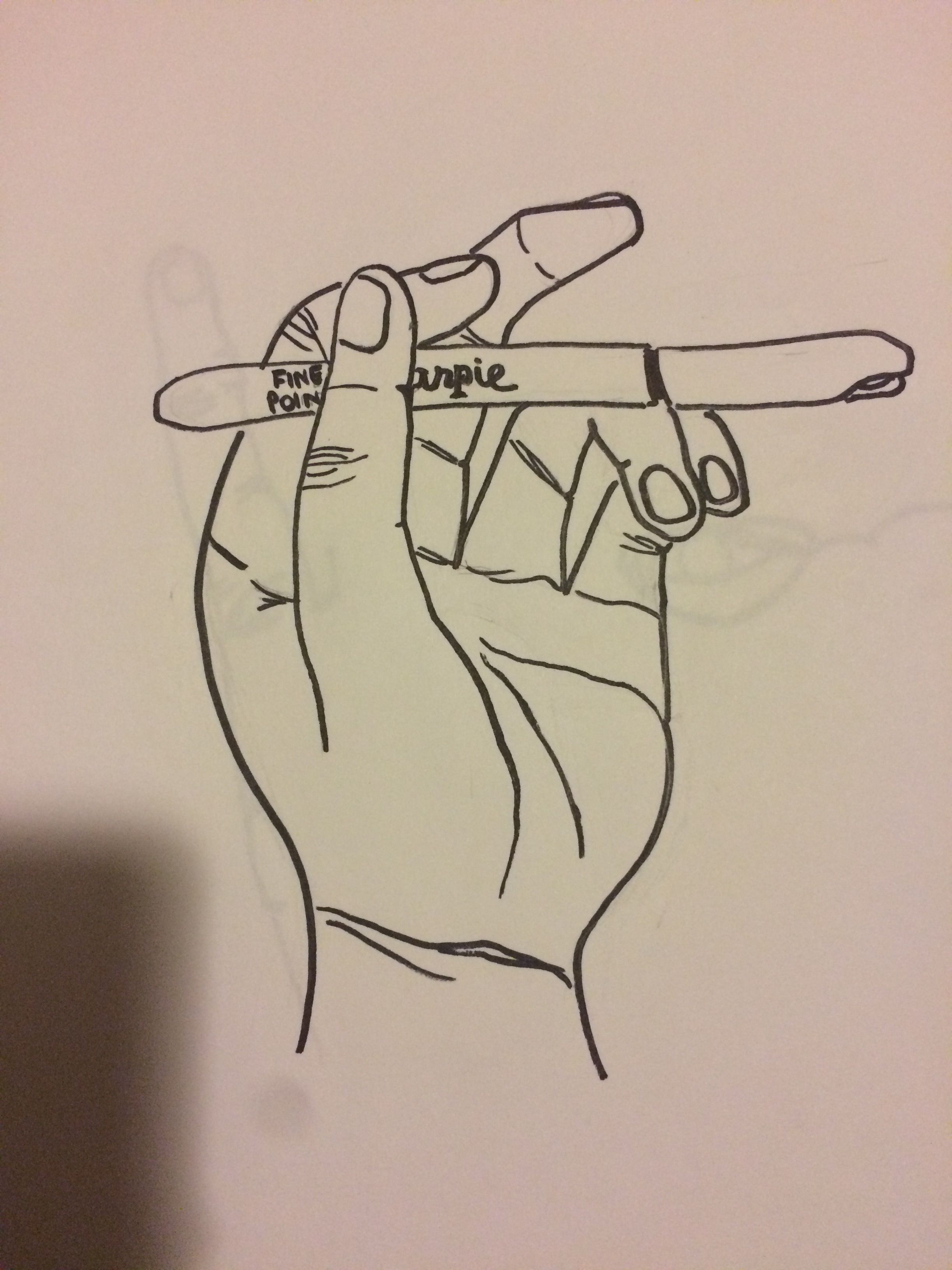 Line Drawing Holding Hands : Sea shell continuous line drawing my sketchbook