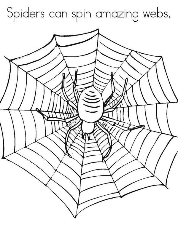 Spiders Can Spin Amazing Spider Web Coloring Page Color Luna In 2020 Spider Coloring Page Spider Web Coloring Pages