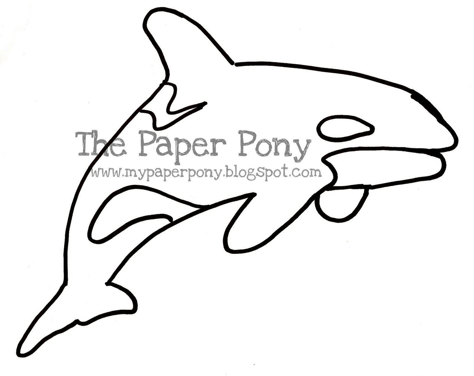 Orca Craft For Preschool