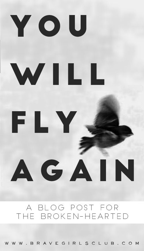 You Will Fly Again   {a blog post for the broken-hearted, broken-spirited, or broken-winged... for anyone who is trying to figure out how to put their life back together.}