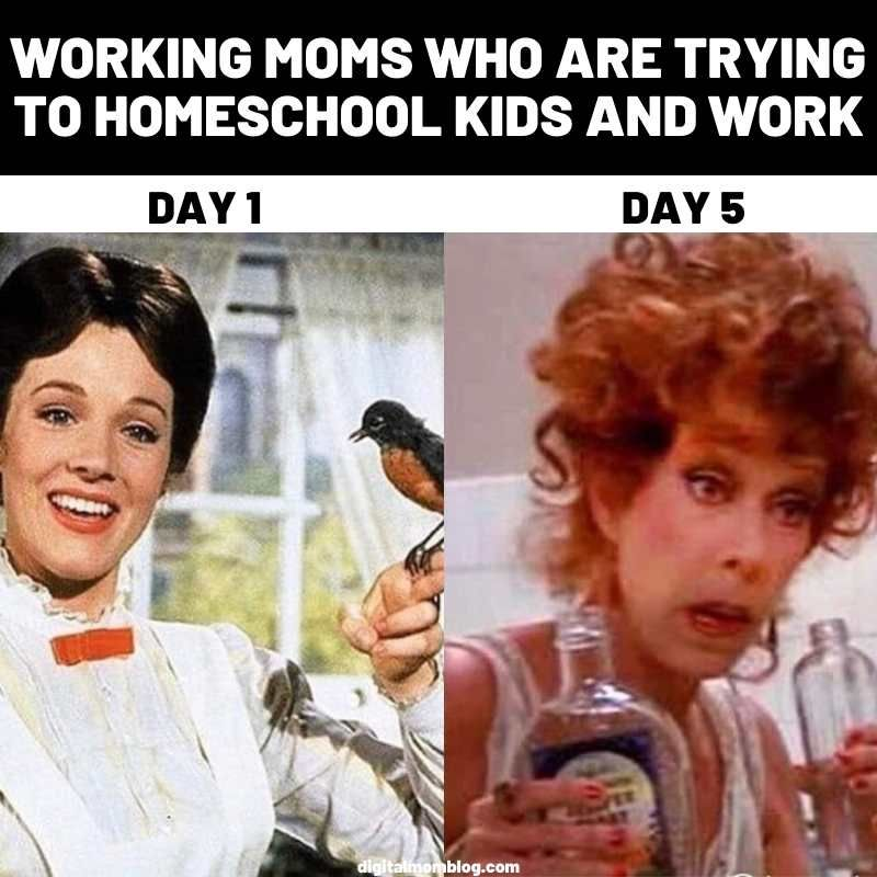 25+ Funny Homeschool Memes 2020 - Remote Learning Laughs
