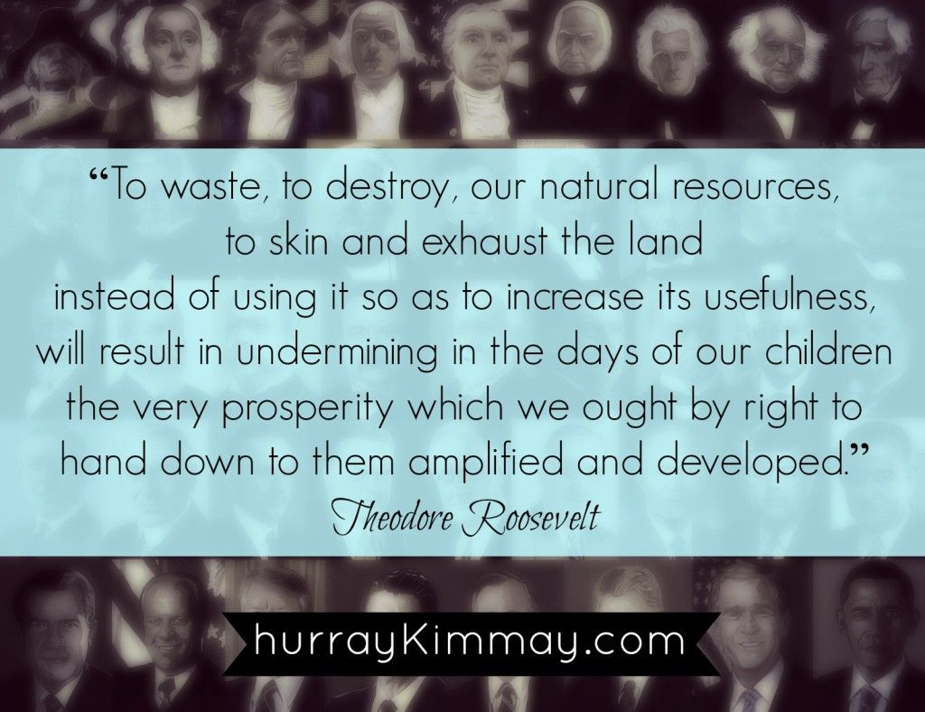Theodore Roosevelt Quote Teddy Roosevelt Quote Via Hurray Kimmay Environment Eco Quote