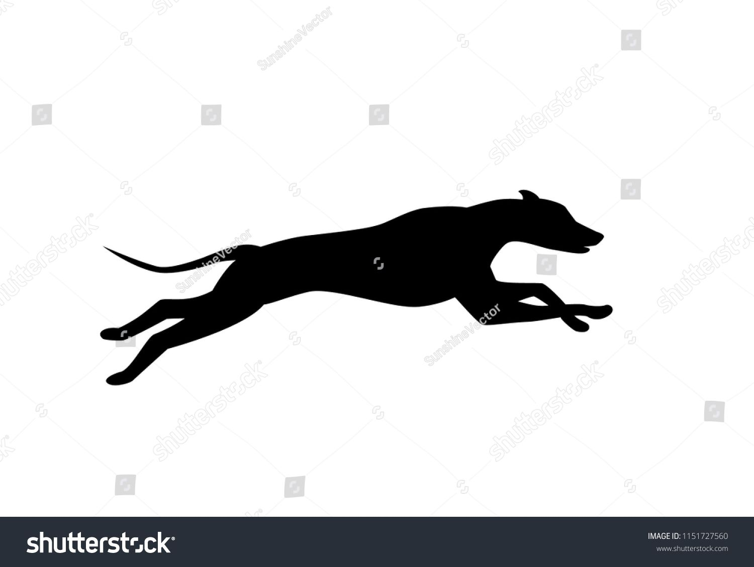Running Dog Silhouette In Black Color Vectorsilhouette Dog Running Vector Dog Silhouette Color Vector Dog Runs