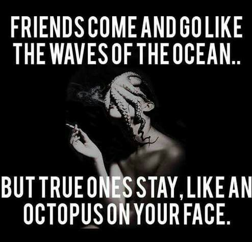 Stuck Like An Octopus Friends Quotes Friends Come And Go Best Friend Quotes