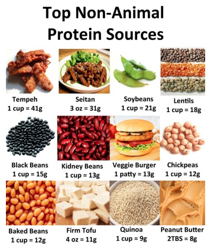 Good Vegetarian Protein Sources Nutrition, Whole food