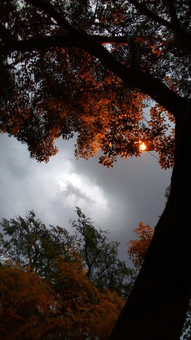 Amanecer nublado.. | Fotografías!! | Pinterest | Amaneceres y Fotografía