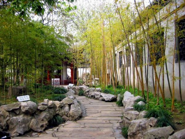 Chinese Bamboo Garden Patio Image