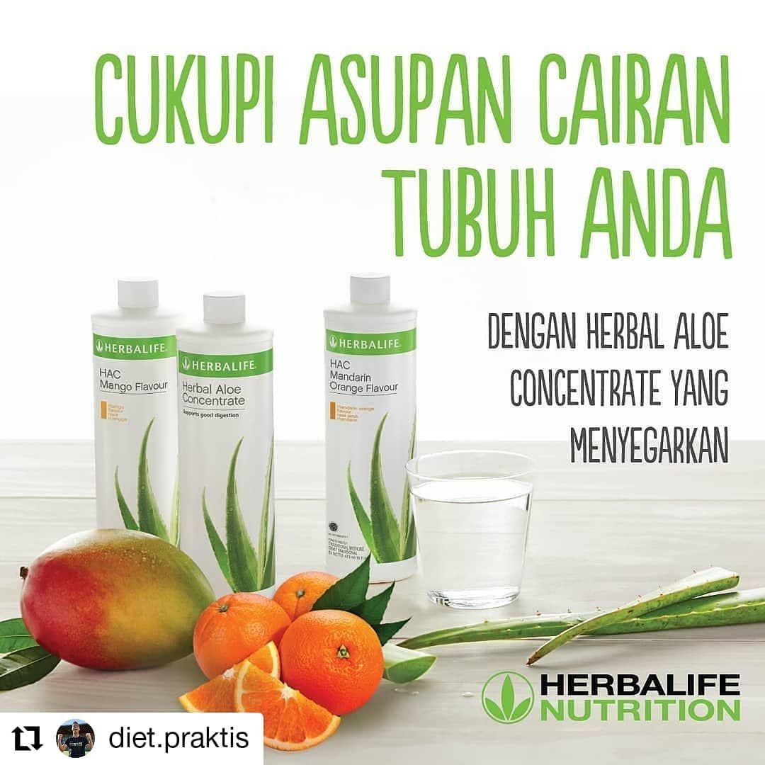 Repost Diet Praktis Nikmati Segelas Herbal Aloe Concentrate Saat Sahur Dan Berbuka Anda Bisa Mencampurkannya Dengan Ir Herbalife Diet Resep Diet