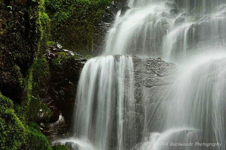 Fairy falls Columbia gorge