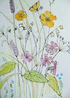 Line Drawing Of Goats Beard Plants Google Search Flower Drawing Drawings Botanical Art