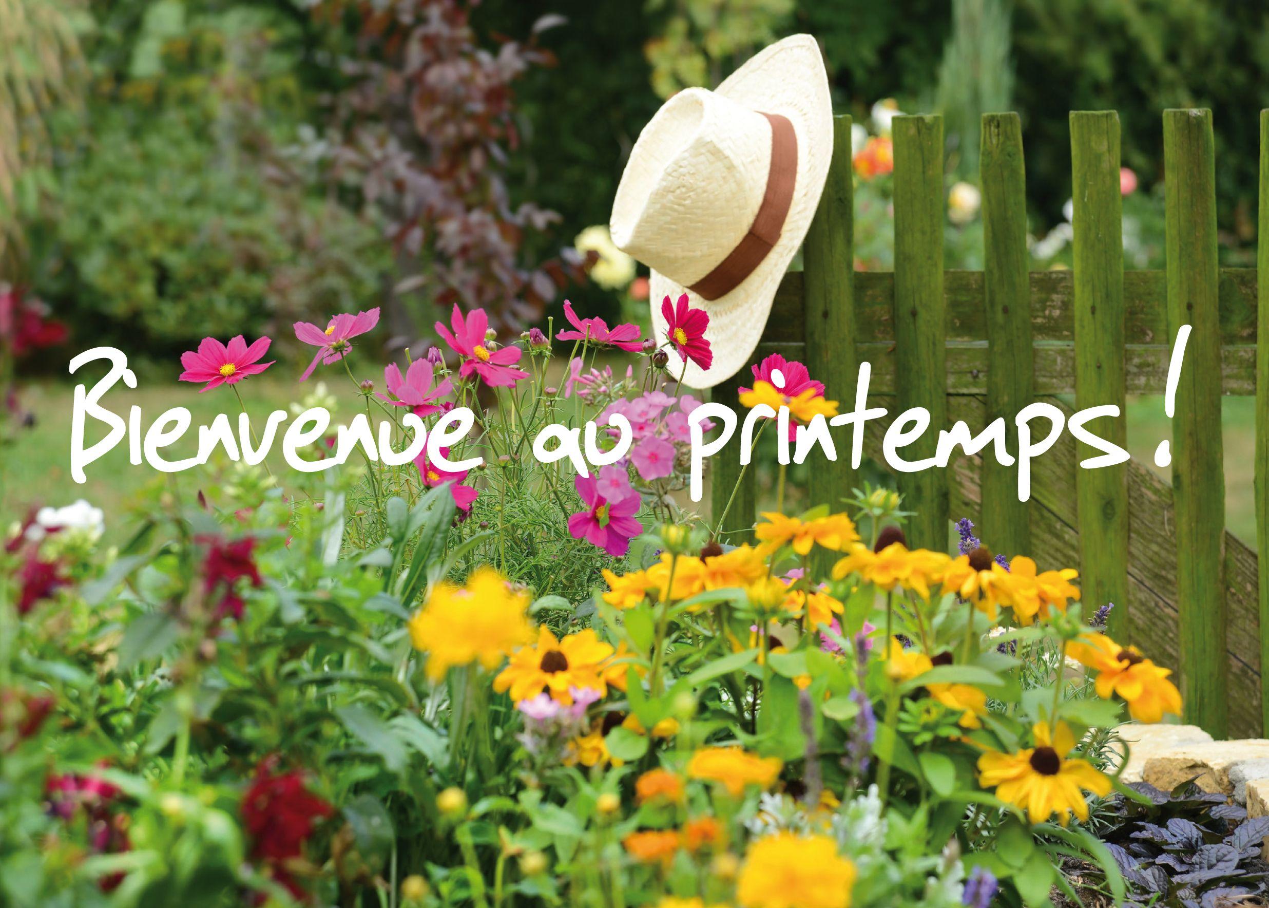 Printemps fleurs et bouquets pinterest recherche for Entretien jardin printemps