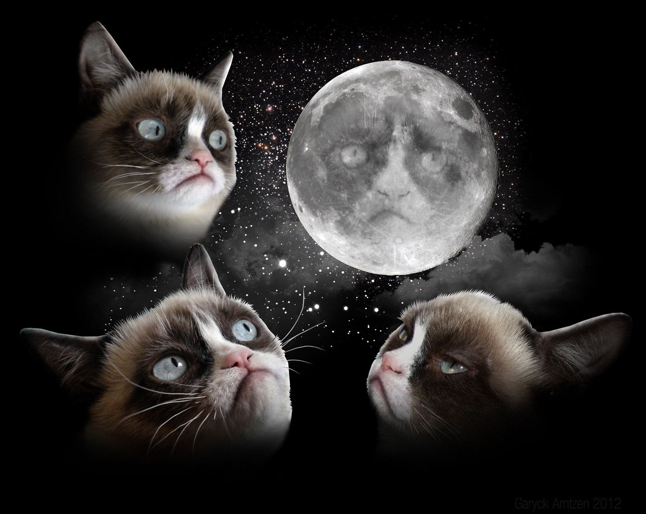 Now this is a t-shirt i want! 3 grumpy cat moon
