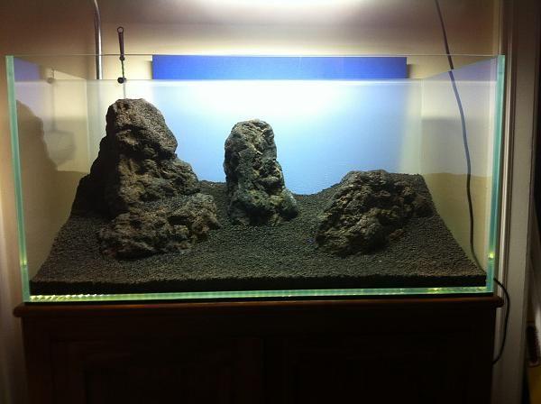 aquascape with lava rock