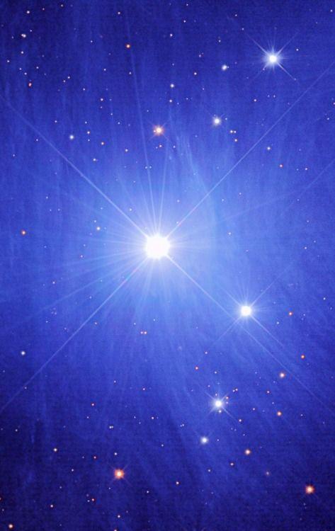 M45 (Pleiades - Maia Nebula) Credit: Misti Mountain Observatory