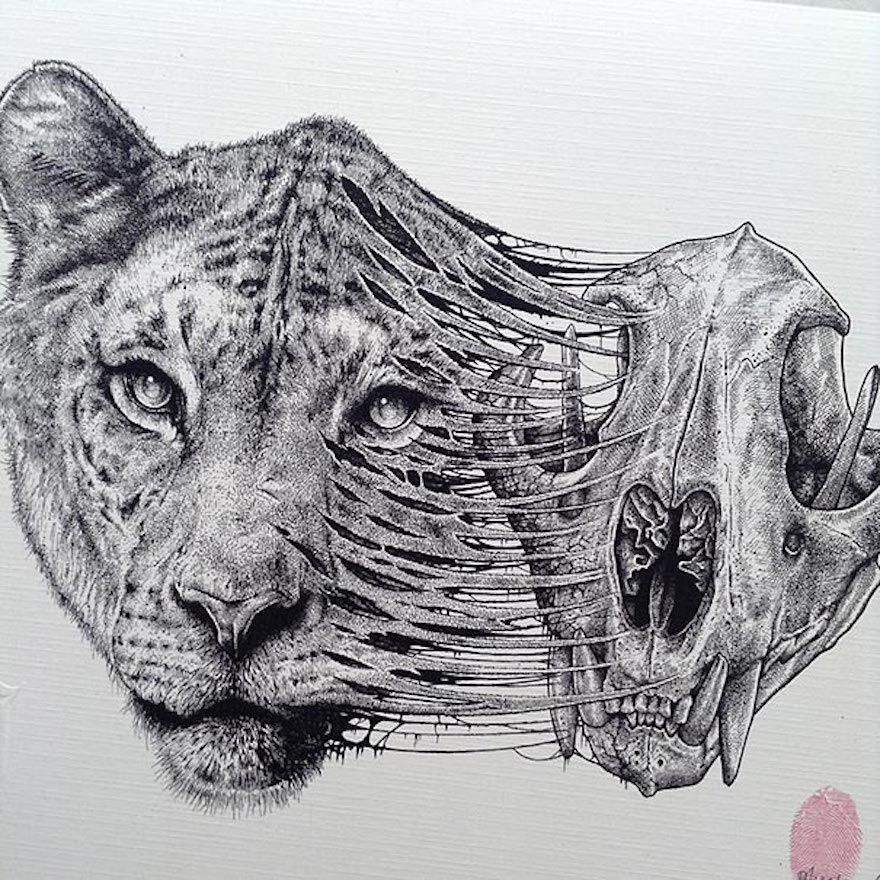 animals evolve out of their skeletons in dark drawings by