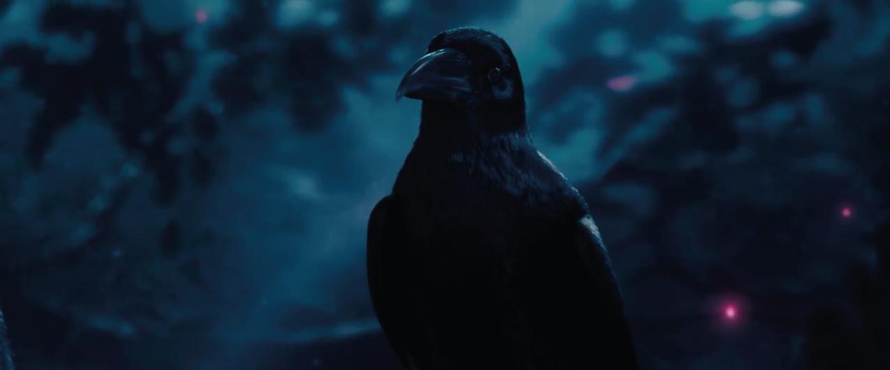 Diaval The Raven Bird And Maleficent S Sidekick