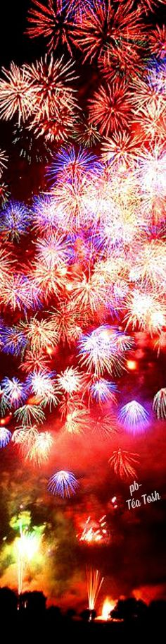 Pin By Thant Zin Soe On Photograph Fireworks Patriotic Holidays Let Freedom Ring