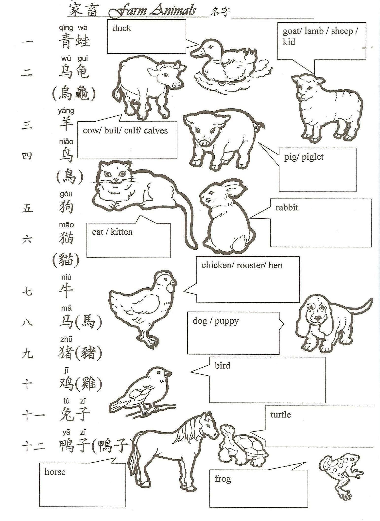 Hua Hua Fun Language Class