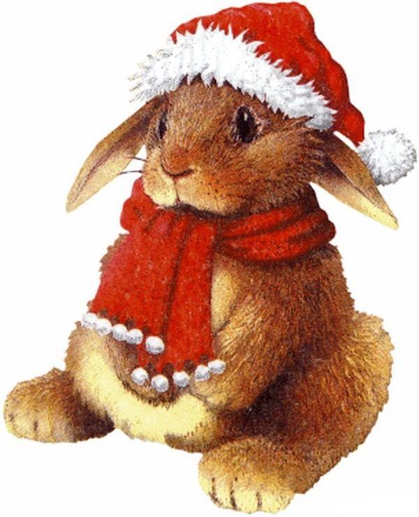 Открытка год кролика, днем