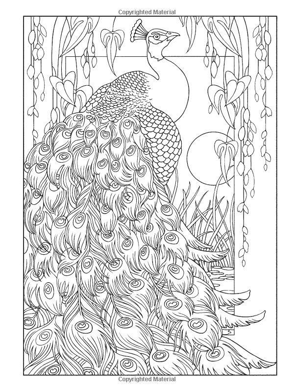 creative haven peacock designs coloring book creative haven coloring books marty noble - Peacock Coloring Book