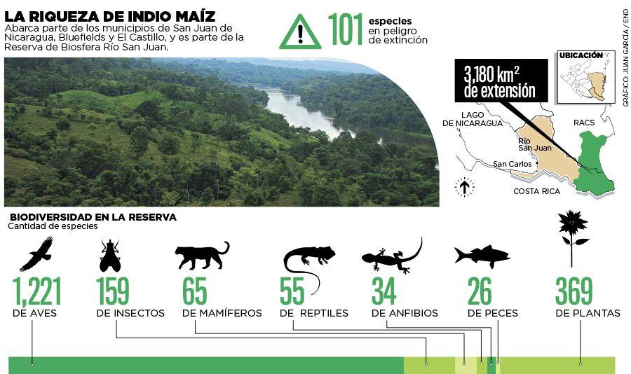 Reserva Biológica, Indio Maíz | Data Nicaragua | Pinterest