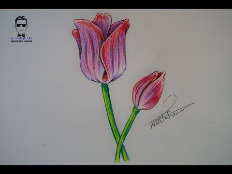 طريقة رسم وردة مع الخطوات للمبتدئين Youtube Drawings Art Draw
