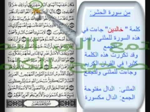 أخطاء شائعة عند نطق بعض كلمات القرآن الكريم مهم لكل مسلم ومسلمة Quran Bullet Journal