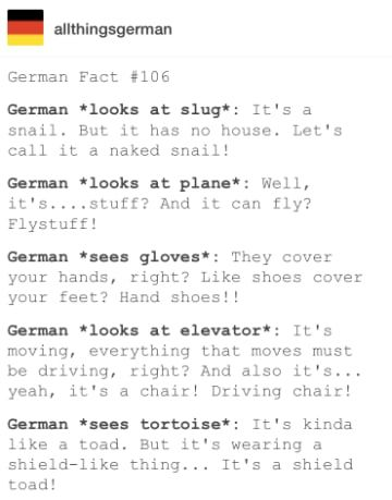 Photo of 19 Evidence that German is a strange but also grandiose language