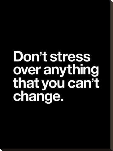 Stretched Canvas Print: Dont Stress Anything That You Cant Change by Brett Wilson : 29x22in